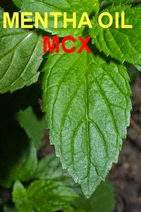 mcx mentha oil, trading tips, free agri calls, Free Agri Tips, Future Trading Tips