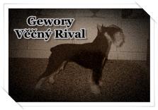 http://hairyhope.blogspot.cz/p/gewory-vecny-rival.html