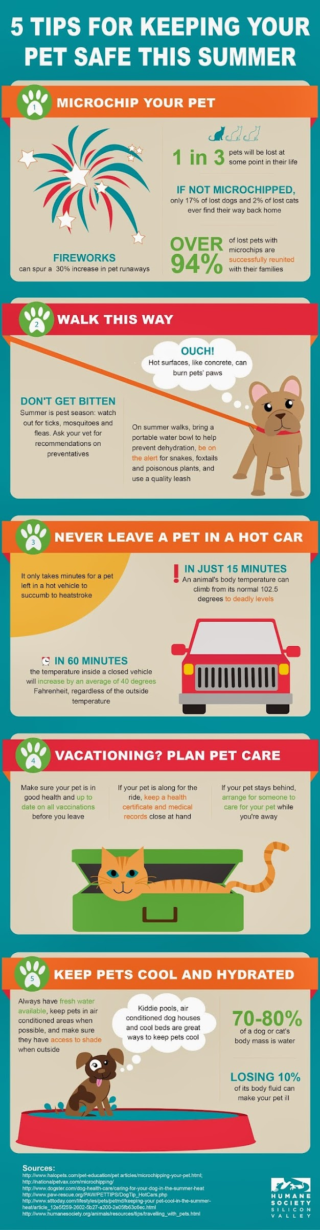 tips on keeping a pet at home Though many pet parents successfully groom their dogs at home, it will take a bit of time and effort to get your dog comfortable with a routine of at-home grooming, which can help reduce shedding in addition to further deepening your relationship with your dog.