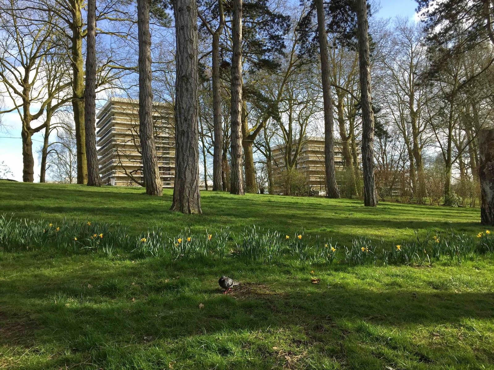 Le parc barbieux dit le beau jardin 4 saisons for Jardin 4 saison