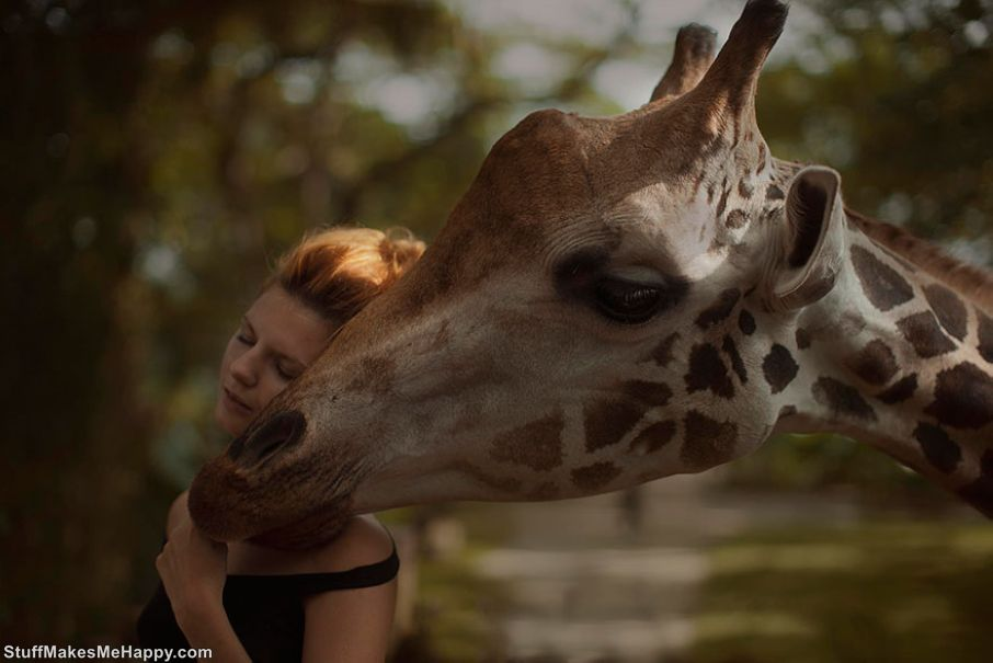 Russian Beauties and Wild Animals in the Photographs of Katerina Plotnikova