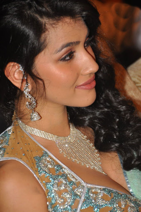 anjali lavania @ panjaa audio launch close up excl hq photo gallery