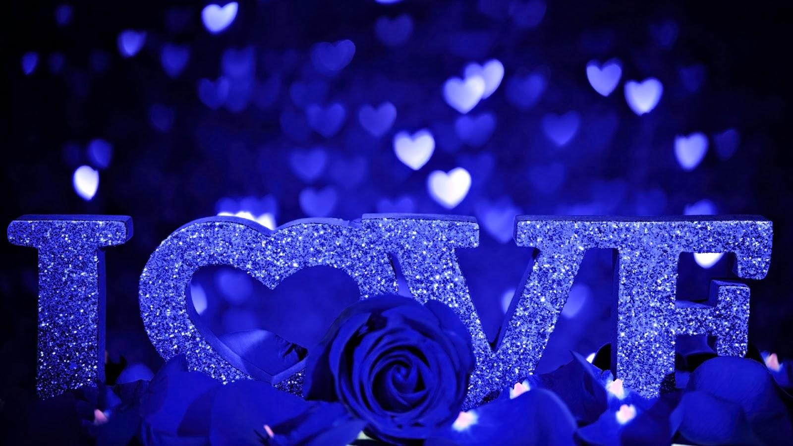 Blue Rose I Love You