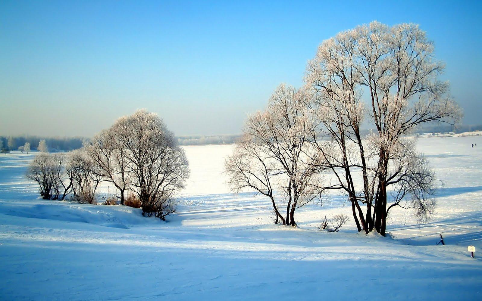 wallpapers winter wallpapers