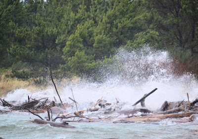photo of waves at Barview Oregon by Nancy Zavada