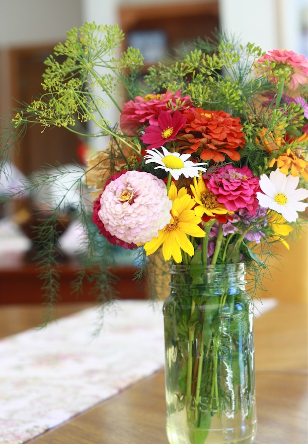 Fresh dill for flower arrangement