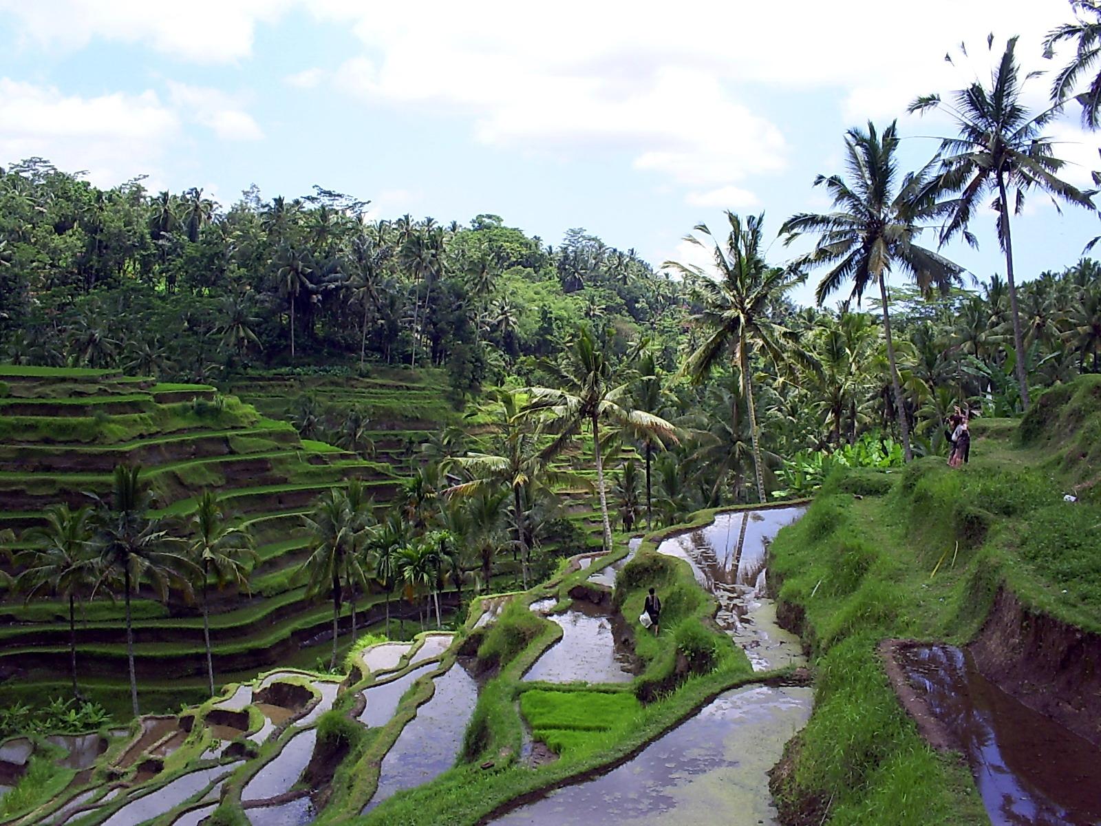 Kunjungi 10 tempat romantis di indonesia