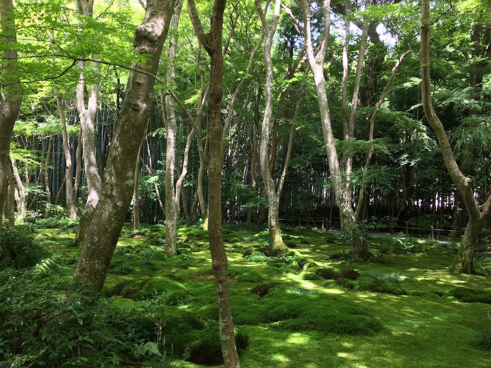 Les vacances de la famille welter tarju: août 2015