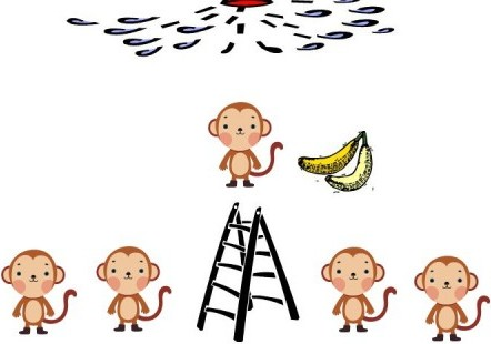Expérience des singes et de l'échelle