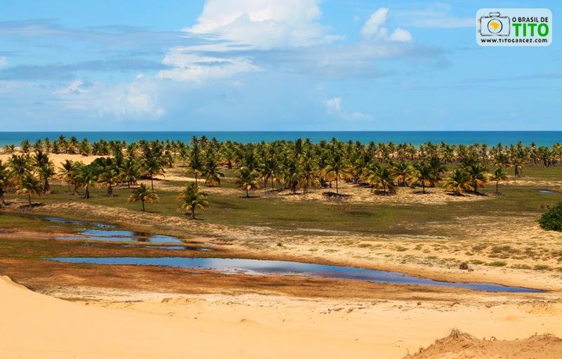 Dunas, coqueiral e lagoas próximo à Lagoa Redonda, na Reserva Biológica de Santa Isabel, em Pirambu, Sergipe