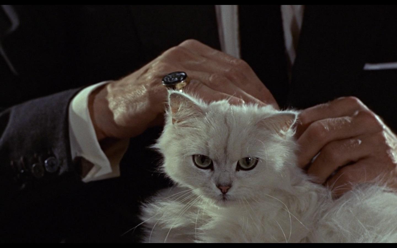 Bond Villain Cat Name