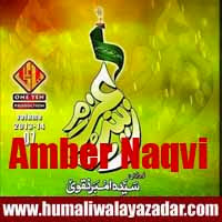 http://ishqehaider.blogspot.com/2013/11/syeda-amber-naqvi-nohay-2014.html