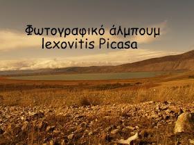 lexovitis Picasa