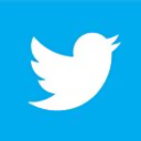 Twitter icon in Windows 8 Metro style