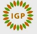 Lowongan Pekerjaan di PT IGP International – Yogyakarta