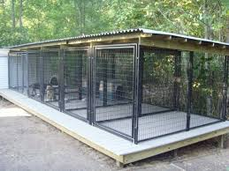 The real apbt september 2015 for Dog breeding kennel design