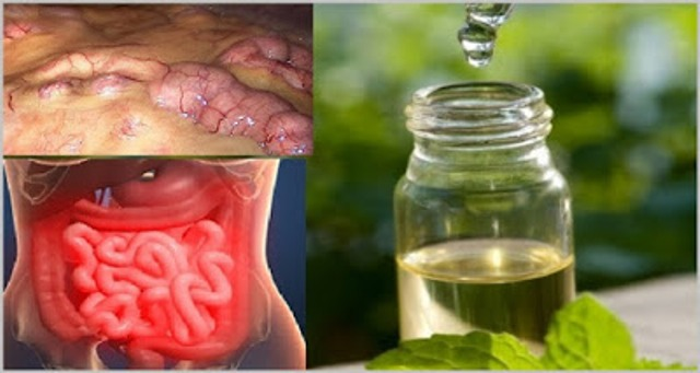 Remove All Toxins From the Body in 3 Days A Method That Prevents Cancer, Removes Fat and Excess Water