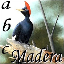 ABC de la Madera