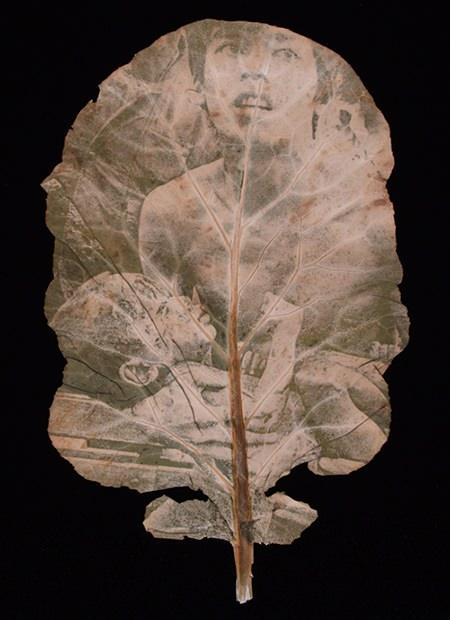 Chlorophyll Printing Art by Binh Danh