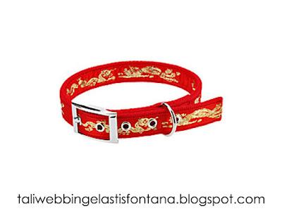 kalung anjing atau collar dog
