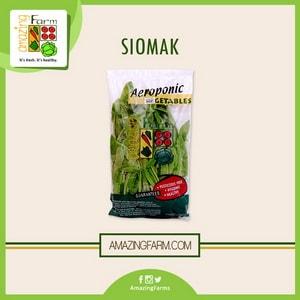 Siomak Promo Juice dan Salad Hidroponik - Amazing Farm