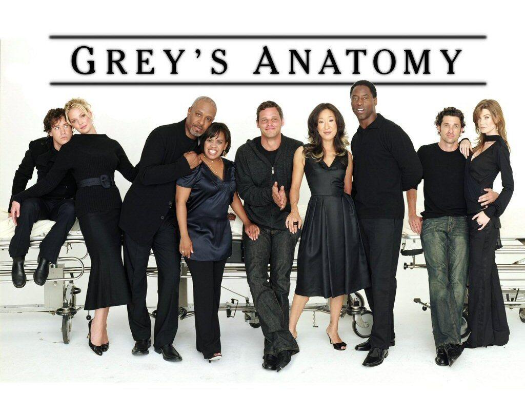 Greys anatomy 8