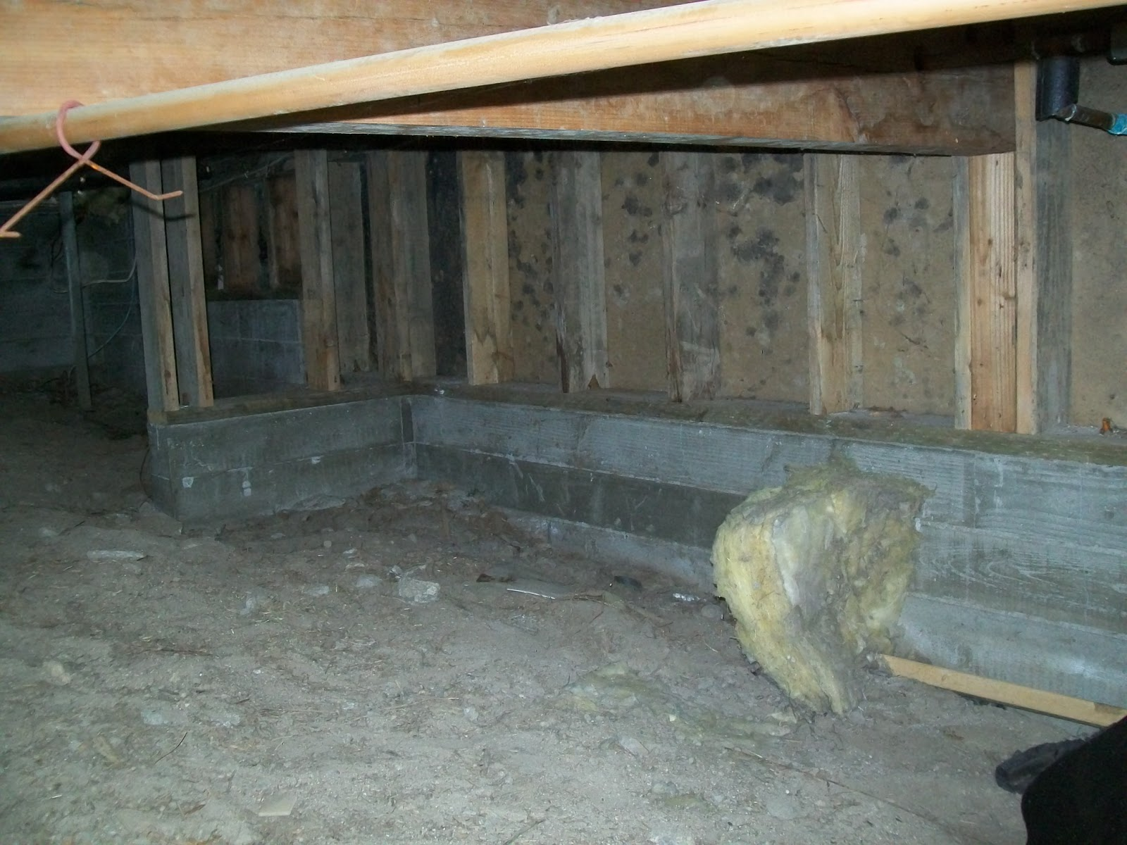 Mold Testing Inspections In Del Mar