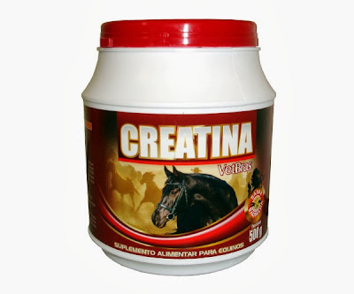 Creatina Animal: para Cavalos