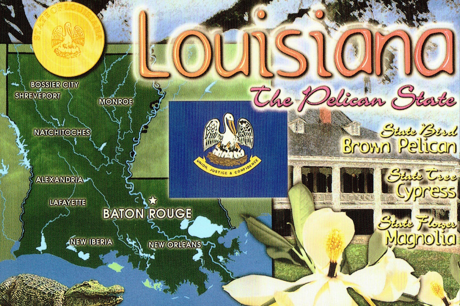 an overview of louisiana 2017 state agriculture overview louisiana census state profile: louisiana ranked items within the us, 2012 item quantity us rank universe 1.