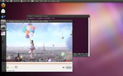 Обзор Ubuntu 11.04 Natty Narwhal Ubuntu_natty_compiz_unity