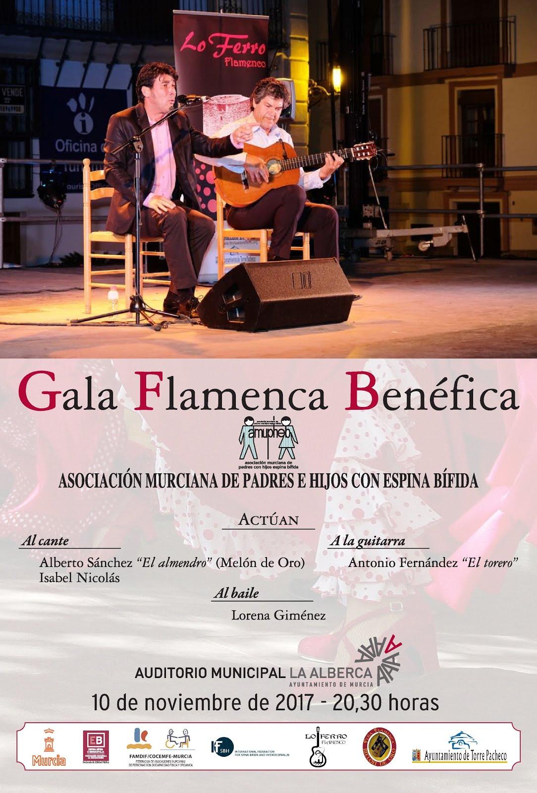 Galas Flamenco Solidario