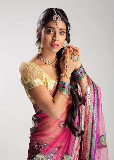 Shriya Saran Latest Picture Shoot Stills in Saree