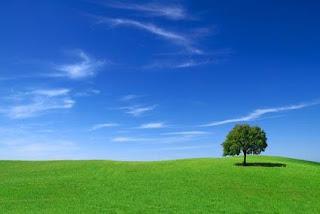 Le imprese industriali per la protezione dell'ambiente