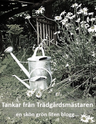 Trädgård zon 2 : Tankar från trädgårdsmästarn svenska gare uppdelat på växtzon
