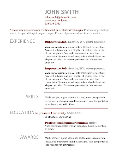 professional resume examples best professional resume templates