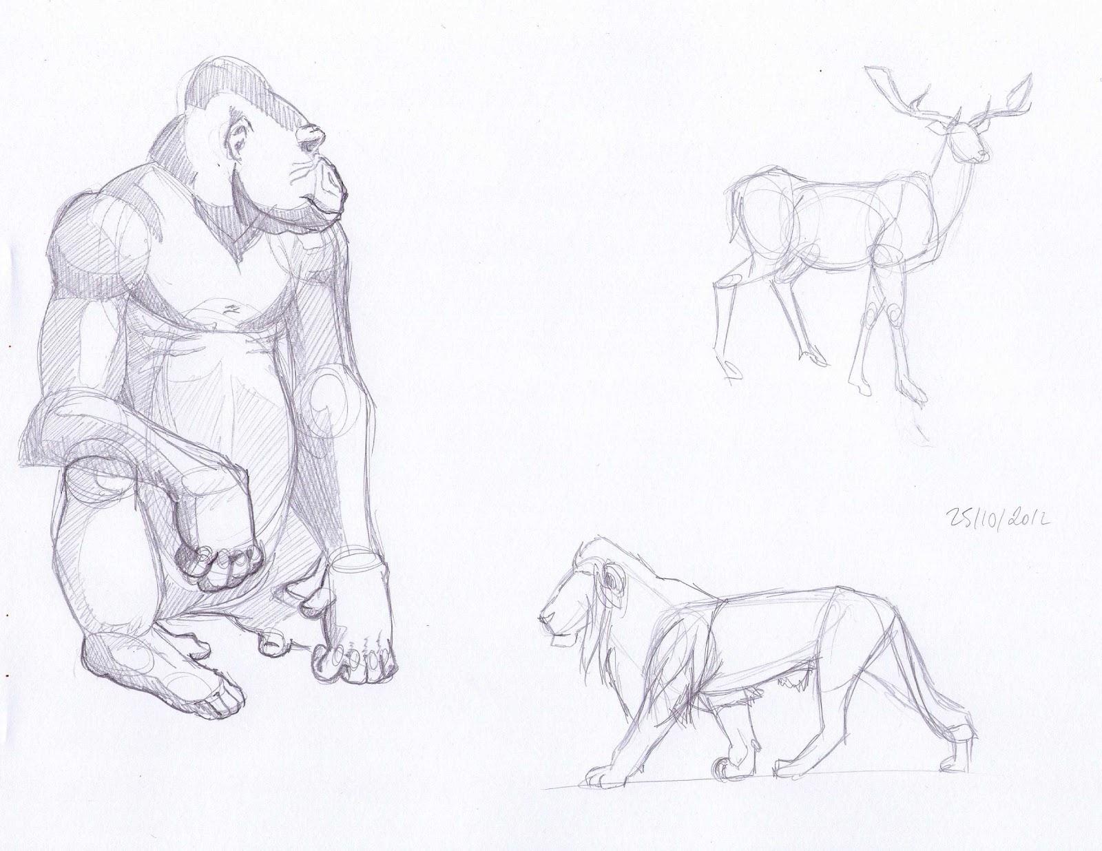 Blog de claire matz croquis animaux - Croquis animaux ...