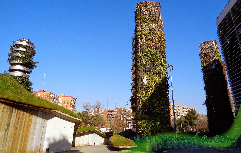 torres jardin vegetal