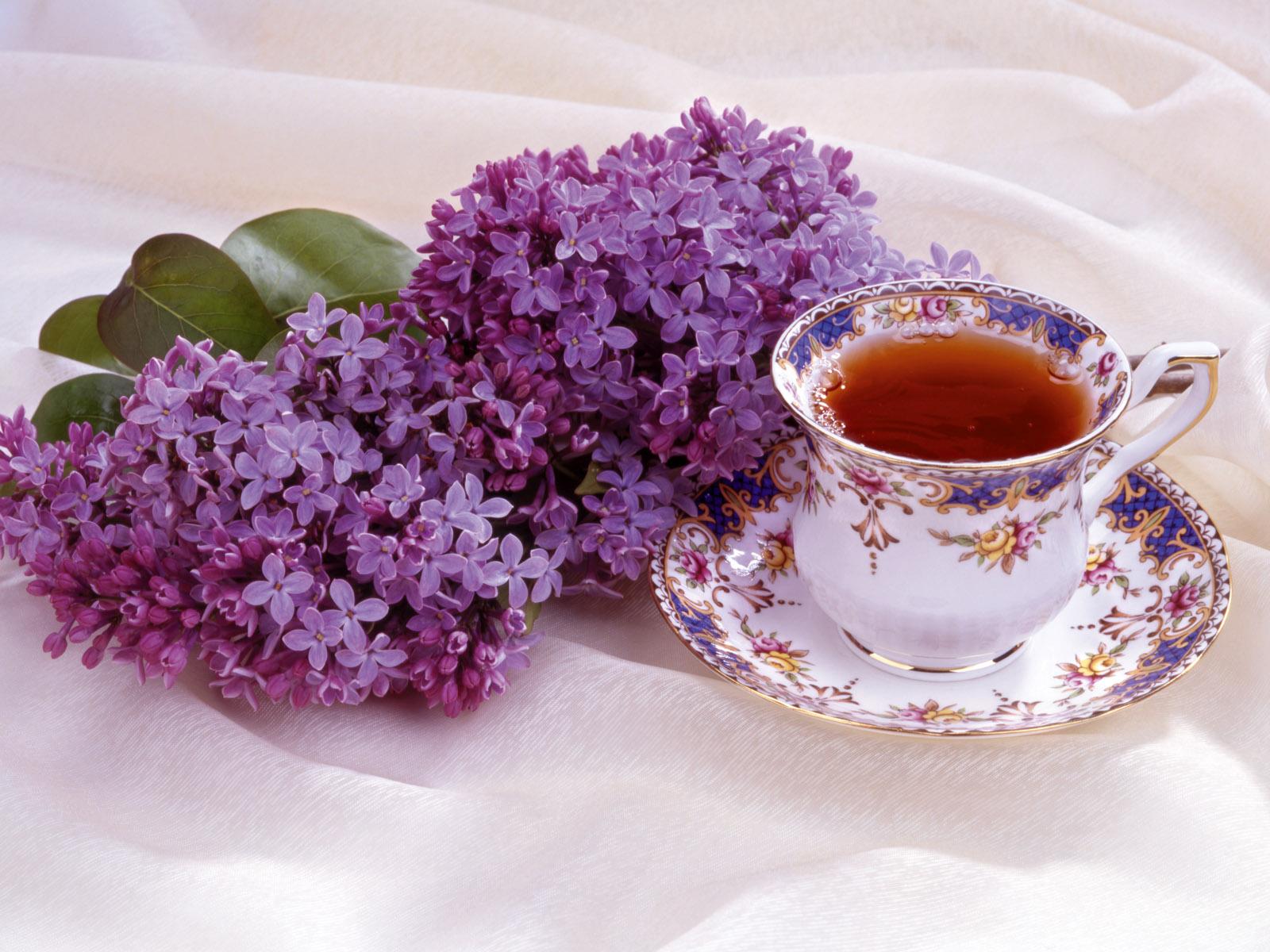 http://1.bp.blogspot.com/-2wslDqWRwGM/T23gyLQioGI/AAAAAAAAK-k/oHifllPBRbc/s1600/Lilac_and_Teacup.jpg