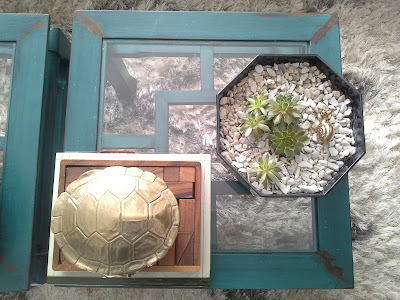 succulent plants coffee table, nate berkus gold turtle, succulent plants