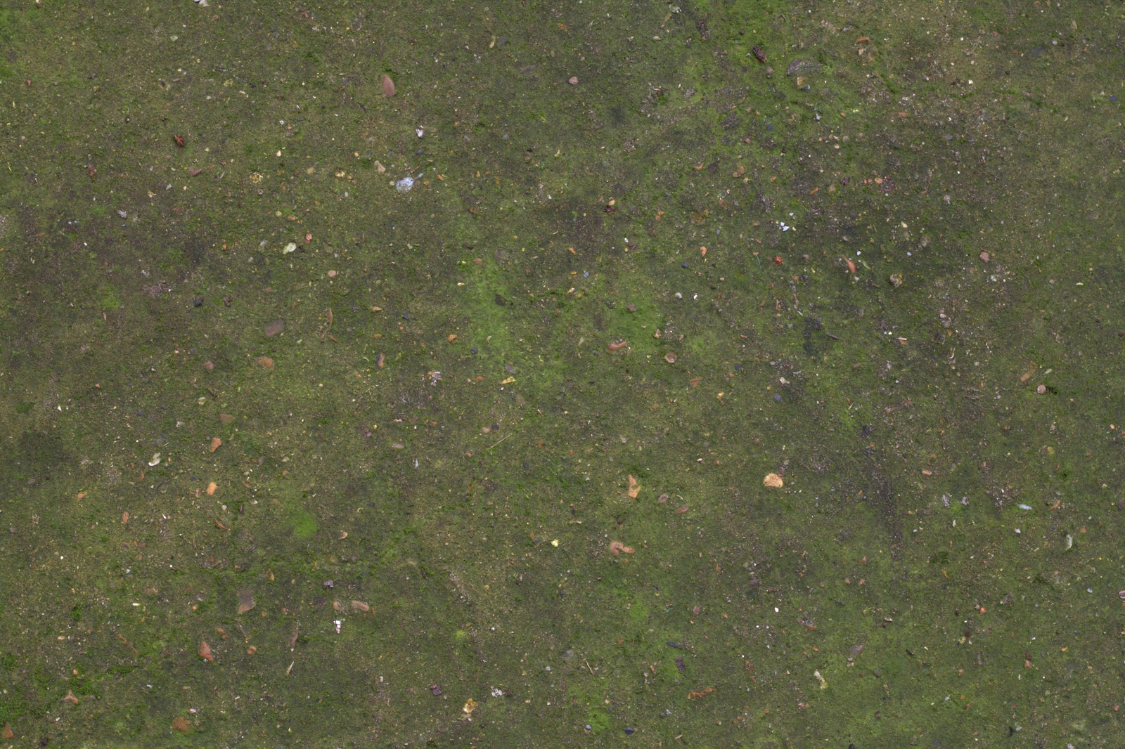 Concrete floor moss dirt texture two 4770x3178
