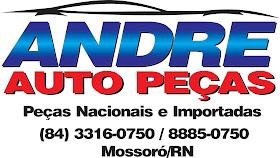 ANDRE AUTOPEÇAS