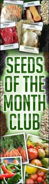 http://www.averagepersongardening.com/seedsclub