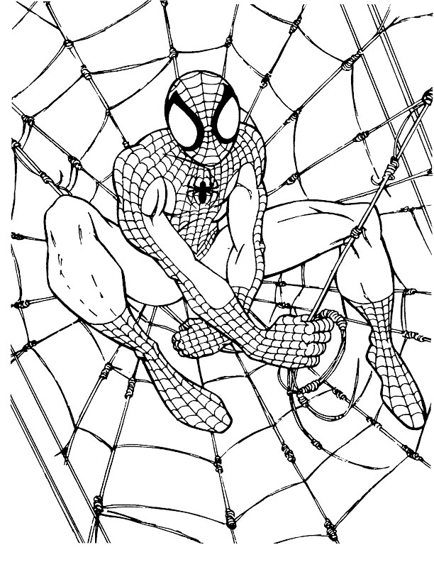 kids under 7 spider man coloring pages - Coloring Pages Spiderman Printable