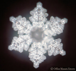 gracias, arigato, thank you, merci, Masaru Emoto