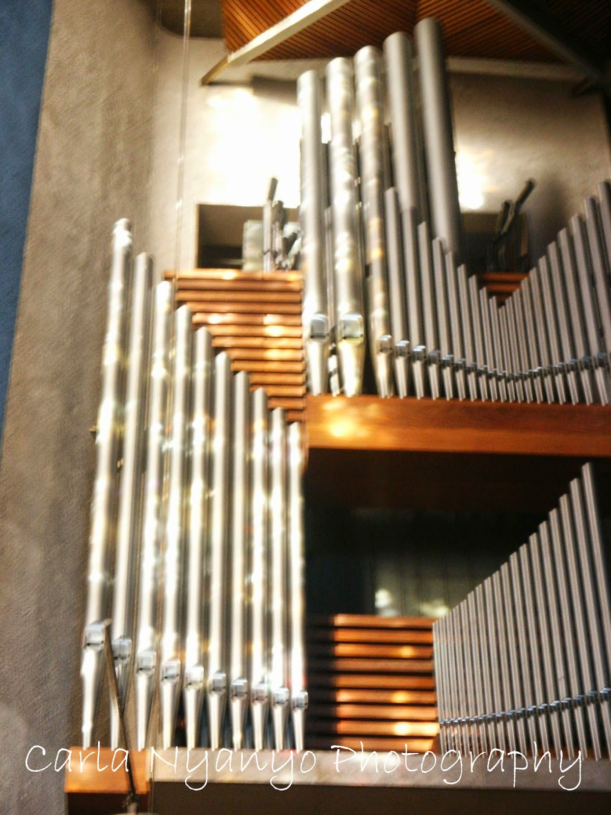 sunlight on organ pipes