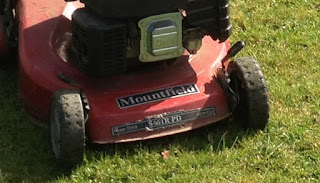 Grass cutting Crawley, lawn mowing, horsham, Sussex