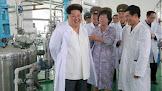 Cura para Aids, Ebola, Mers e Sars foi encontrada, segundo Coreia do Norte