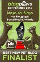 Blog Paws Nose-to-Nose Finalist