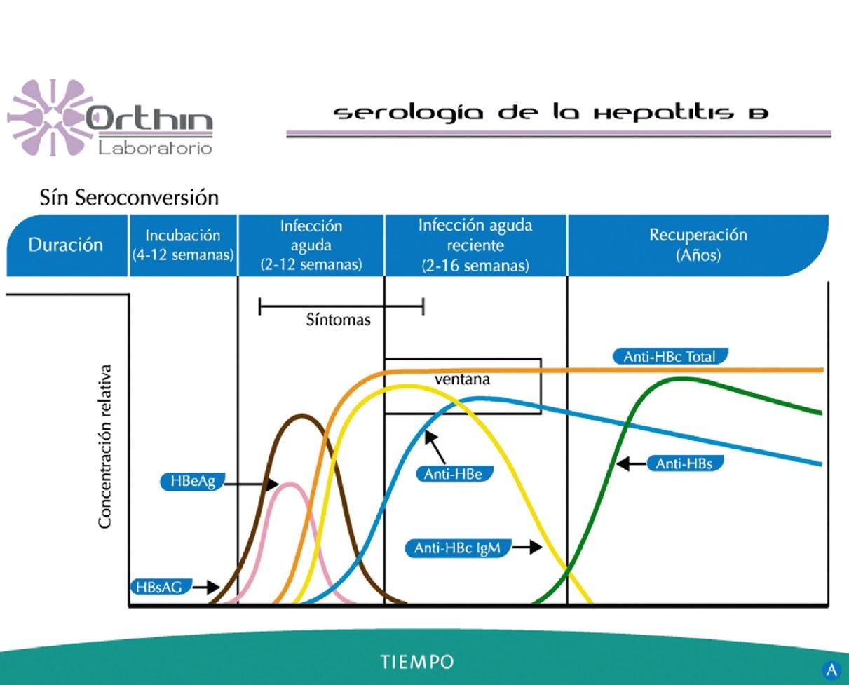 Orthin laboratorio de referencia en costa rica serolog a for La b b