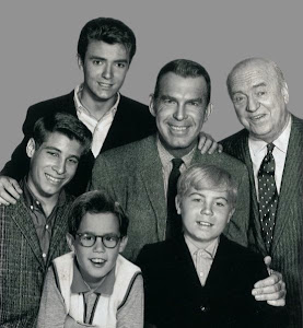"""My Three Sons"" (1960-72, ABC/CBS)"